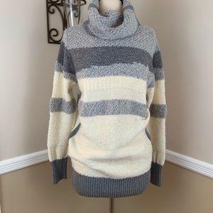 Banana Republic Landscape Knit Turtleneck Sweater